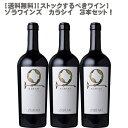 【送料無料】【ストックするべきワイン】ゾラ ワインズ カラシイ 750ml×3本セット!【ワインセット アルメニア 数量限定 】