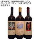 【送料無料】世界平和を願うワイン飲み頃!ヴィノ・デ・ラ・パーチェ2009 3本セット【