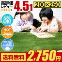 【期間限定740円オフ】 ラグ ラグマット 送料無料 rug カーペット グリーンも 250×200 200×250cm 洗える 滑り止め 絨毯 北欧 夏用