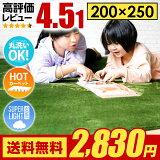 ��660�ߥ��դ�2830�ߡ�10/24 23:59�ޤǡ� �饰 �饰�ޥå� ����̵�� rug �����ڥå� ������ 250��200 200��250cm ������ ���ߤ� ��� �̲� ����