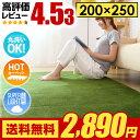 �饰 �饰�ޥå� ����̵�� rug �̲� �����ڥå� ������ 250��200 200��250cm ������ ���ߤ� ��� ���� ����