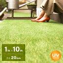 人工芝 ロール 1m×10m 芝丈20mm 送料無料 人工芝 芝生マット 人工芝生 人工芝マット