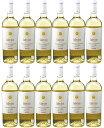 [12本セット] ファンティーニ・コレクション・ヴィノ・ビアンコ (ファルネーゼ・ヴィニ) Fantini Collection Vino Bianco [現行ヴィンテージ] (Farnese Vini) イタリア アブルッツォ 白 750ml