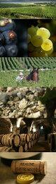 ムルソー・プルミエ・クリュ・ペリエール[2009](メゾン・ジョゼフ・ドルーアン)Meursault1erCruPerrieres[2009](MaisonJosephDrouhin)【白ワイン】
