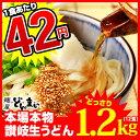 【送料無料】本場讃岐うどん製麺工場直送!1食あたり42円 讃岐うどん どかんっと1.2kg
