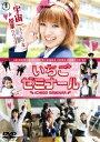 【新品】【DVD】いちごゼミナール 菊地凛子