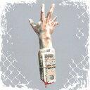 【新品】【CD】DROPOUT SIDING DOGMA x LORD 8ERZ