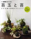 【新品】【本】苔玉と苔 小さな緑の栽培テクニック NHK出版 編
