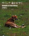【新品】【本】サバンナ命かがやく Animals of East Africa 写真集 宮嶋英一/著