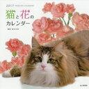 掛曆, 海報, 簡介 - 【新品】【本】カレンダー '17 猫と花のカレンダー 植木 裕幸 撮影