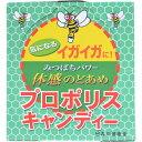 森川健康堂 プロポリスキャンディー 9粒×10本入 4952106212756【取寄商品】【食品】
