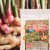 Golden Ginger candy 90 g × 1 Japan health 4994813004675 fs3gm