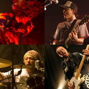 【新品】 SHAKALABBITS「2010年サラペのBUS TOUR」 DVD