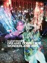 �ڿ��ʡ� �˾�Ƕ��ΰ�ưͷ���� DREAMS COME TRUE WONDERLAND 2011��(��������) [DVD]