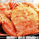 【毛蟹 最高級】北海道産 雄武【大型】毛ガニ 480g×2尾...