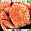 【毛蟹 最高級 送料無料】北海道産 雄武 【堅蟹】 毛ガニ 420g×2尾.ギッシリ詰まった蟹身と、...