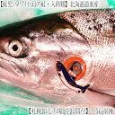 【鮭児 最高級 送料無料】北海道産 道東 鮭児 2.5kg前後.幻の鮭と言われ、本当に希少な秋鮭!中卸の目利きで選んだ、究極の一本をどうぞ!タグあり、出所がはっきり、公設市場流通商品。【楽ギフ_メッセ】 北海道 ケイジ サケ