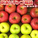 りんご 訳あり 10kg 送料無料 リンゴ 北海道 青森 リンゴ ※沖縄は送料別途加算