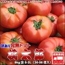 トマト 訳あり 北海道 とまと 桃太郎 8kg 送料無料 ※沖縄は送料別途加算
