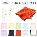 ショッピングピンク 【メール便可】 今治タオル いまばりハンカチーフ 20 みやざきタオル