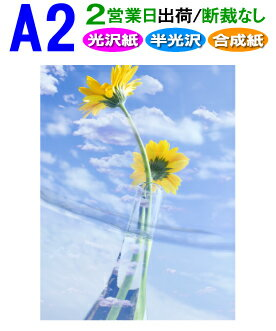 【A2】ポスター印刷2営業日目出荷【化粧断裁しない】税別8,000円以上で送料無料