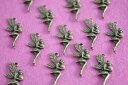 數位內容 - アクセサリーパーツ チャーム 妖精 金古美 不思議の国のアリス 10個 24mm