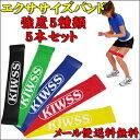 ゴム チューブ トレーニング セット エクササイズバンド5本セット (強度5種類) ストレッチ チュ...