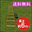 トレーニングラダー 6m トレーニング用品 野球 陸上 ラグビー アジリティー サッカー フットサル 練習器具 部活 02P29Jul16