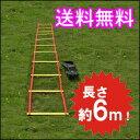トレーニングラダー 6m トレーニング用品 野球 陸上 ラグ...