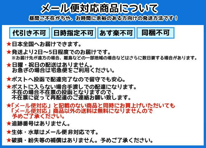 メール便対応 GEX クリスタル水温計 S ピ...の紹介画像3