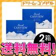 ◆メール便送料無料◆【S】2ウィークキャンビュー 2箱セット 両目3ヶ月分 2週間使い捨てコンタクトレンズ シンシア ネコポス