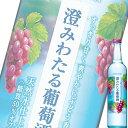 (単品) サントリー 澄みわたる 葡萄酒 500ml瓶 (Ready To Serve) (フルーツリキュール) (ぶどう)