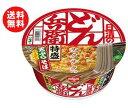 送料無料 日清食品 日清のどん兵衛 特盛天ぷらそば [西] 142g×12個入 ※北海道・沖縄・離島は別途送料が必要。