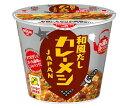 ショッピングカレー 送料無料 日清食品 和風だし カレーメシ JAPAN 102g×6個入 北海道・沖縄・離島は別途送料が必要。