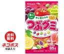 ショッピングフルーツ 【全国送料無料】【ネコポス】春日井製菓 つぶグミ 85g×6袋入