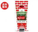 送料無料 ハグルマ JAS標準 トマトケチャップ 1kgチューブ×12本入 ※北海道・沖縄・離島は別途送料が必要。