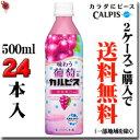 CALPIS 味わう葡萄&「カルピス」 500ml×24本【梱包A】