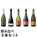 スパークリングワイン 5本セット【送料無料】※北海道