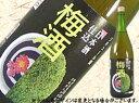【2月20日出荷開始】日本酒仕込みの梅酒1800ml
