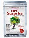 OPC(オリゴメリックプロアントシアニジン)が主成分の健康補助食品です。【日用品屋】マスケリエ OPCサプライズ 60粒【※キャンセル・変更不可】