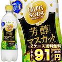 [在庫処分]アサヒ カルピスソーダ 芳醇マスカット 500mlPET×48本[賞味期限:2020年7月1日]北海道、沖縄、離島は送料無料対象外です。