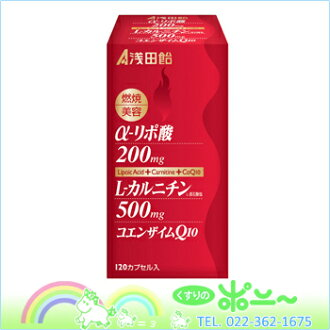 Lipoic acid + carnitine + Coenzyme Q10 (120 capsules)