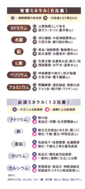 【5%OFFクーポン利用でポイント10倍相当!...の紹介画像2