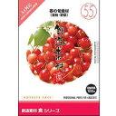 イメージランド 創造素材 食(55) 春の旬食材(果物・野菜) HYB/CD ソウゾウソザイショク55ハルノ