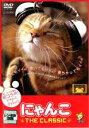 【中古】DVD▼にゃんこ THE CLASSIC▽レンタル落ち