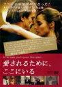 【中古】DVD▼愛されるために、ここにいる▽レンタル落ち