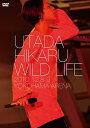 WILD LIFE【DVD・音楽】