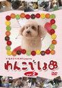 楽天DVDZAKUZAKU【バーゲン】【中古】DVD▼わんこでしょ 2