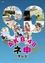 【バーゲンセール】【中古】DVD▼AKB48 ネ申 テレビ ス