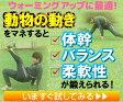 クリーチャートレーニング〜生き物の動作が選手の体を活性化させる〜